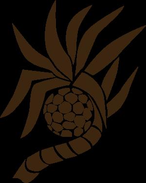 ADAN RESORT オフィシャルサイト|沖縄北部のリゾート運営